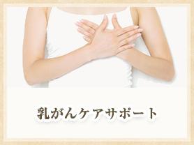 乳がんケアサポート